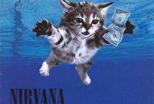 Love a Cat Covers