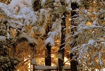 Winter Wonderland / by Anny Huberts