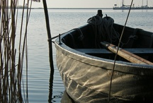 de Zuiderzee (IJsselmeer)