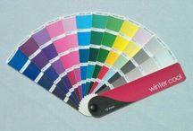 True Winter color guide