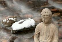 ~Buddha~ / by stephanie balok
