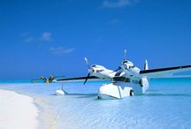 Seaplanes / Once De Havilland is in the blood it's there for ever