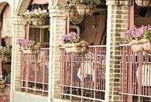 April in Paris / by Domestic Diva
