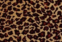 Cheetah Animal Print Carpet! / These make great rugs! Great for girls room!!