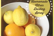 Natural Housekeeping / Old-fashioned, environmentally-friendly cleaners and methods.
