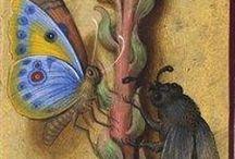 средневековые миниатюры с растениями