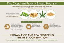 proteinplantbase