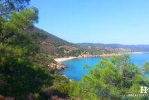 HalkidikiTravel.com - Akti Salonikiou beach in Halkidiki