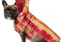 FASHION - Dog Clothes / Dog dresses, clothes, outfits, etcetctec