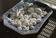 Seashells Done Well