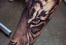 Tiikerit
