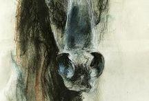 horses.p
