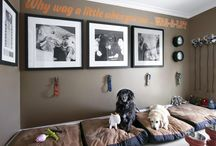 Pups Corner / Ideas for doggie decor in a room of the house we will get one day. / by Amber Kirby