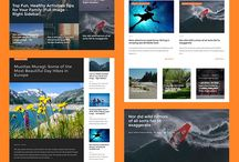 WordPress / Latest Collection of WordPress  Themes and Tips that will help you to boost your business