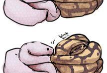 Everybody loves Sneks♡