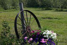 Wagon wheel, Milk Can, Bench ideas