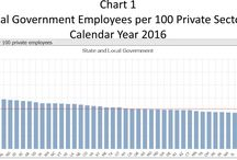 Government Workforce
