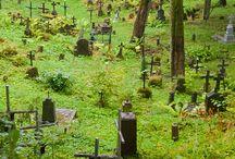 Cemetery / by Nicole Rino