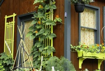 outdoor decor / by Amy Shriver