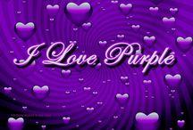 My PURPLE Passion!!!! / by Sabrina Johnson