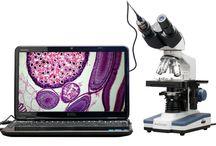 40X-2500X LED Digital Binocular Compound Microscope with 3D Stage+USB Camera #AmScope