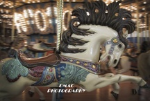 Anyone for a ride on the Carousel?