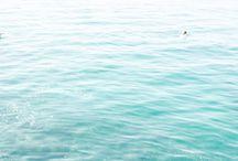 waters & skies