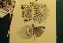 Skeleton  / by Cindy Rodriguez