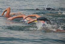 Swimming / by Onnie Gazzo