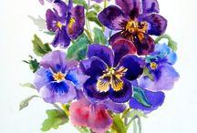 Akwarele / Watercolor