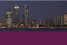 INTERIM BUREAU-INTERIM MANAGEMENT-INTERIM PROFESSIONALS-NETHERLANDS