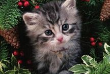 prenten kerstdeco