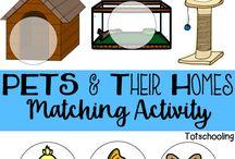 animals activities