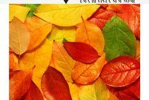 Revista Inominável / Publicações da Revista Inominável Magazine publications #bookstagram