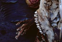 ~*Skulls & Bones*~