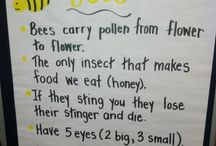 Bee anchor chart