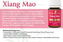 Young Living Xiang Mao Essential Oils