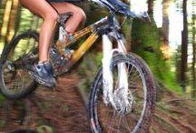 mountain downhill bike
