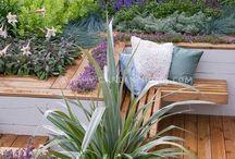 Shady corner garden