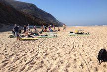 Vi drømmer om en aktiv ferie / Selvom du rejser afsted på charterferie, kan du stadig gøre din ferie til en aktiv ferie. Der er rige muligheder for at inkludere vandreture, surfing og svømning på din ferie. Du kan blandt andet surfe i Portugal eller tage på vandreture på vulkanøen Madeira