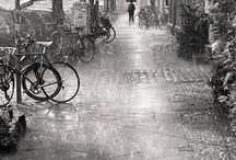 Raindrops Keep Falling.. / by Jeanne Fleming