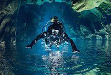 Scuba Diving / by Brittney Fleenor