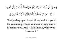 Muslim's Quotes