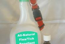 Oils for fur babies