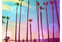 California Love / by Jeanette Russo