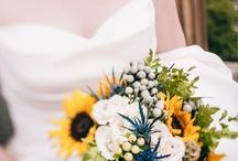 BRIDE'S BOUQUET / by Mark Kintzel Design
