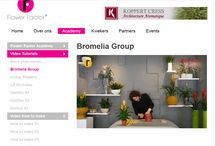 ✾Bromeliad, Flower Factor style / Floral topdesigner Pim van den Akker and friends with their inspiration with bromeliads! Create with a smile!