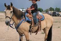 CVACC July 2017 Olsen's Mixer / Olsen's held their annual Chino Valley Area Chamber of Commerce Mixer July 19th at their arena in Chino Valley.  It was amazing from the food through the Barrel Racing & Team Roping demos.  All great fun for members and community guests many of whom had never seen these activities before.  We can't wait to see how they top this for 2018!