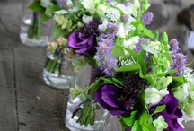 Tablescapes / by Colleen Milton