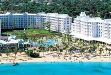 Hotel Riu Palace Tropical BayPrivate Transfer from MBJ Airport